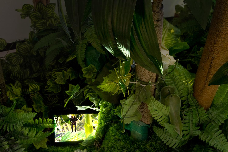 Fantasía China | The Garden | MIOP