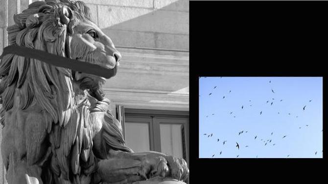 En el archivo del historiador de arte alemán Aby Warburg se ha recuperado su investigación de estatuas y monumentos del imperialismo y el colonialismo. Propone leyes poscoloniales y derechos universales de la naturaleza, el desmontaje de estatuas de cazadores y animales, y que se derrumben la estatua de Colón, la estatua de Franco y la estatua de la libertad.